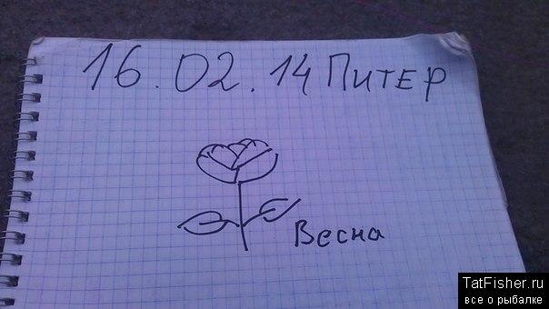 dVBd_R73d3w.jpg