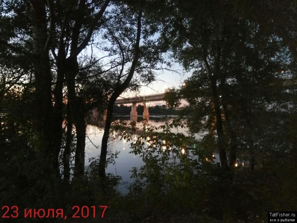 IMG_20170723_024025.jpg