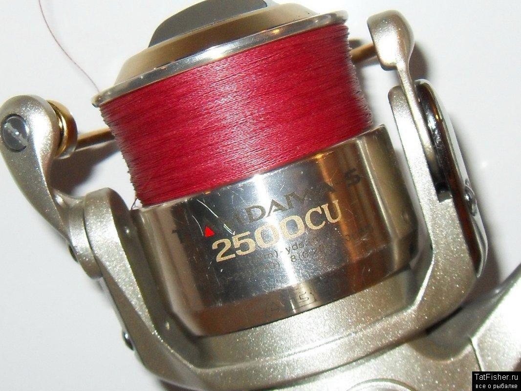 SDC10137.jpg